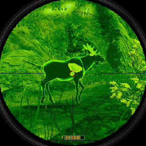 1st person hunting simulation