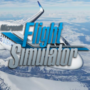 Requisitos del sistema del Microsoft Flight Simulator | Necesita 150 GB de espacio