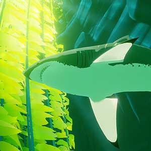 Tiburón en el medio del océano