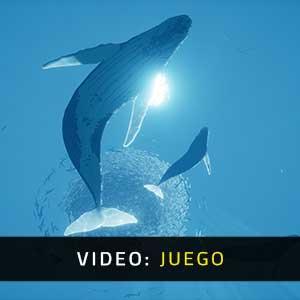 ABZU Video Del Juego