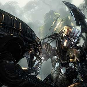 Aliens VS Predator Duelo