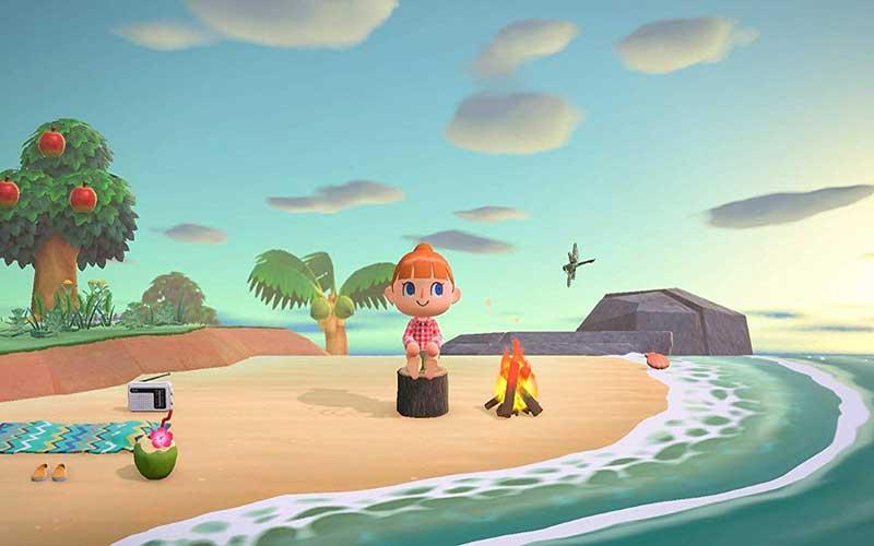 Animal Crossing New Horizons Nintendo Switch Playa