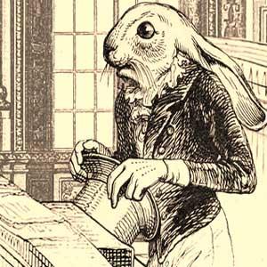 Barron el conejo