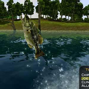 Pescado rápido