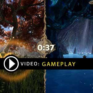 Bee Simulator Gameplay Video