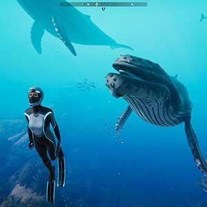 explorador de las profundidades marinas