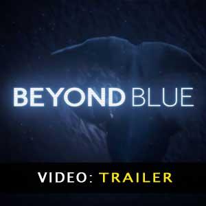 Comprar Beyond Blue CD Key Comparar Precios