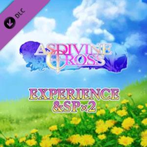 Asdivine Cross Experience & SP x2