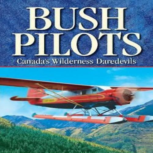 Comprar Aviator Bush Pilot CD Key Comparar Precios