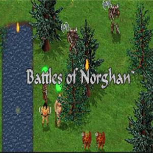 Comprar Battles of Norghan CD Key Comparar Precios