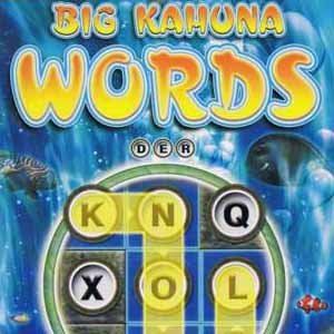 Comprar Big Kahuna Words CD Key Comparar Precios