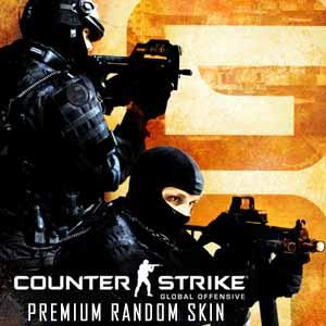 Comprar CSGO 1 Premium Random Skin CD Key Comparar Precios