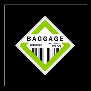 Comprar CSGO Series 2 Baggage Collectible Pin CD Key Comparar Precios