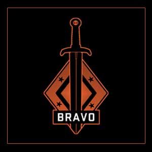 Comprar CSGO Series 2 Bravo Collectible Pin CD Key Comparar Precios