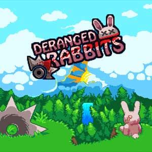 Comprar Deranged Rabbits CD Key Comparar Precios