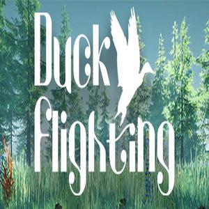 Duck Flighting