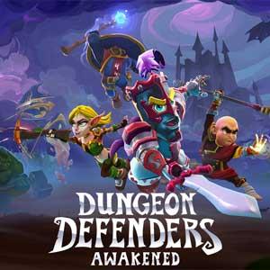 Comprar Dungeon Defenders Awakened CD Key Comparar Precios