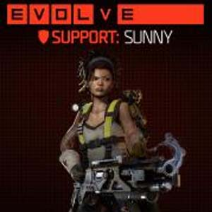 Evolve Sunny (Fourth Support Hunter)