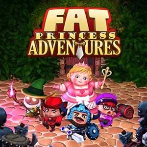 Comprar Fat Princess Adventures Ps4 Code Comparar Precios
