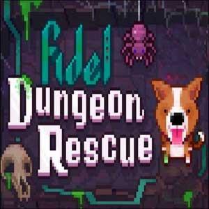 Comprar Fidel Dungeon Rescue CD Key Comparar Precios