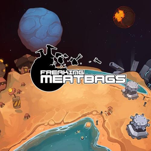 Comprar Freaking Meatbags CD Key Comparar Precios