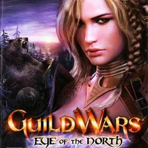 Comprar Guild Wars Eye Of The North CD Key Comparar Precios