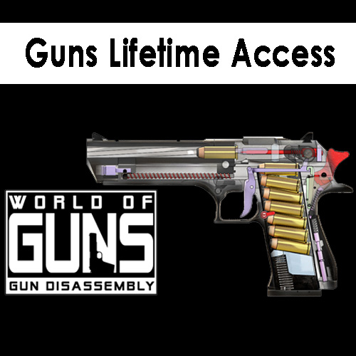Comprar Guns Lifetime Access CD Key Comparar Precios