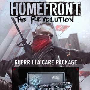 Comprar Homefront The Revolution The Guerilla Care Package CD Key Comparar Precios