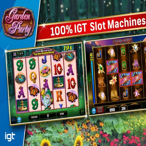 Comprar IGT Slots Garden Party CD Key Comparar Precios