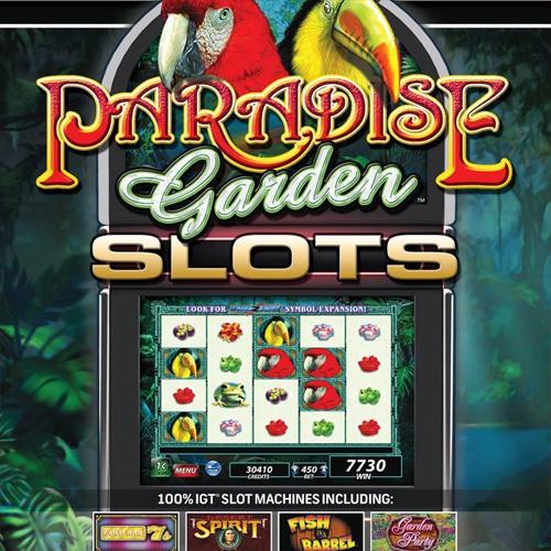 Comprar IGT Slots Paradise Garden CD Key Comparar Precios