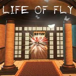 Comprar Life of Fly Xbox Series Barato Comparar Precios