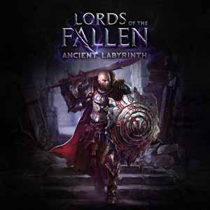 Comprar Lords of the Fallen Ancient Labyrinth CD Key Comparar Precios