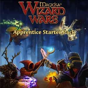 Comprar Magicka Wizard Wars Apprentice Starter Pack CD Key Comparar Precios