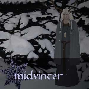 Comprar Midvinter CD Key Comparar Precios