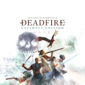 Comprar Pillars of Eternity 2 Deadfire Xbox Series Barato Comparar Precios