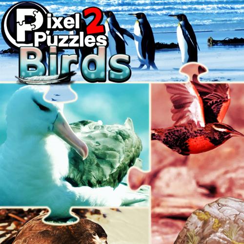 Comprar Pixel Puzzles 2 Birds CD Key Comparar Precios