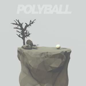 Comprar Polyball CD Key Comparar Precios