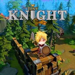 Comprar Tiny Knight CD Key Comparar Precios