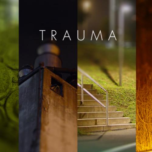 Comprar Trauma CD Key Comparar Precios