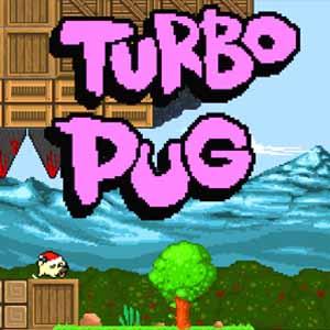 Comprar Turbo Pug CD Key Comparar Precios