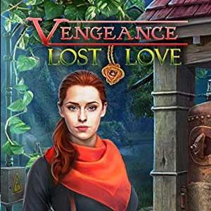 Vengeance Lost Love