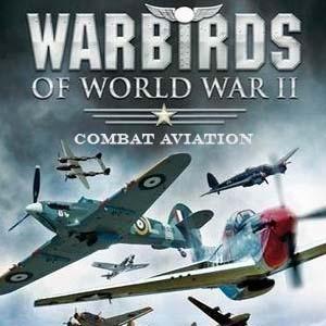 Comprar WarBirds World War 2 Combat Aviation CD Key Comparar Precios