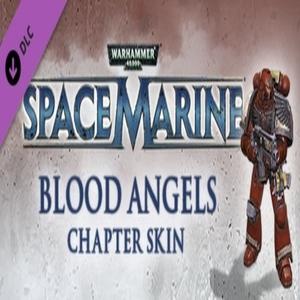 Warhammer 40 000 Space Marine Blood Angels Veteran Armour Set