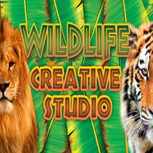 Comprar Wildlife Creative Studio CD Key Comparar Precios