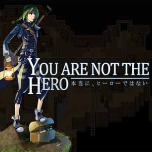 Comprar You Are Not The Hero CD Key Comparar Precios