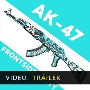CSGO AK47 Skin Frontside Misty