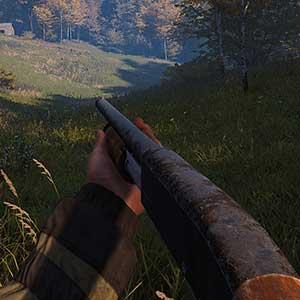 Deadside Escopeta