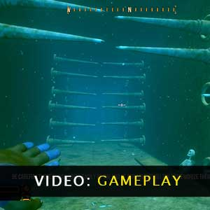 Deep Diving Adventures Gameplay Video