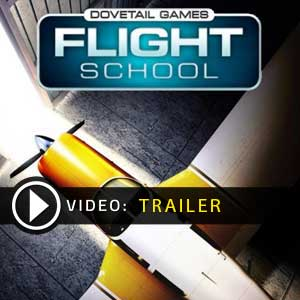 Comprar Dovetail Games Flight School CD Key Comparar Precios