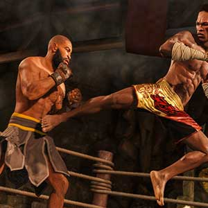 UFC 4 Estilo de lucha